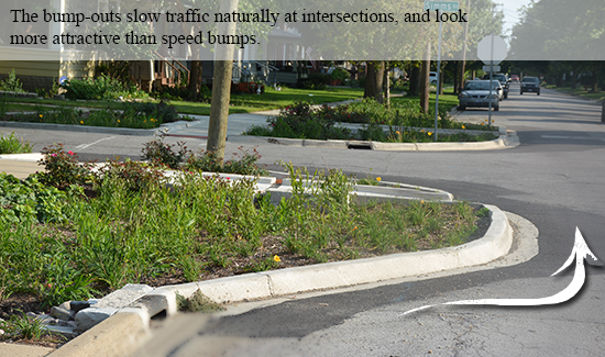 A rain garden designed to slow traffic at an intersection.