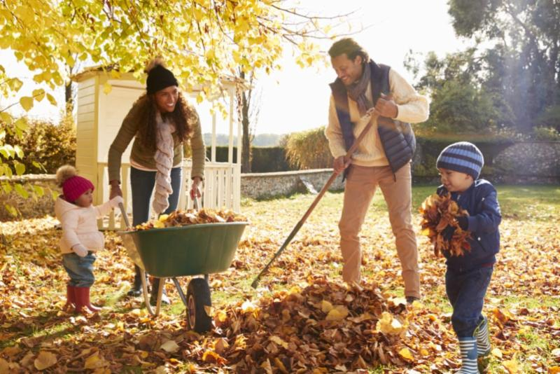 Raking Leaves (1)