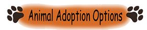Adoption button Opens in new window